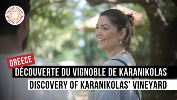 Europe Convergence — Interview | Découverte du vignoble de Karanikolas / Discovery of Karanikolas' vineyard | GREECE